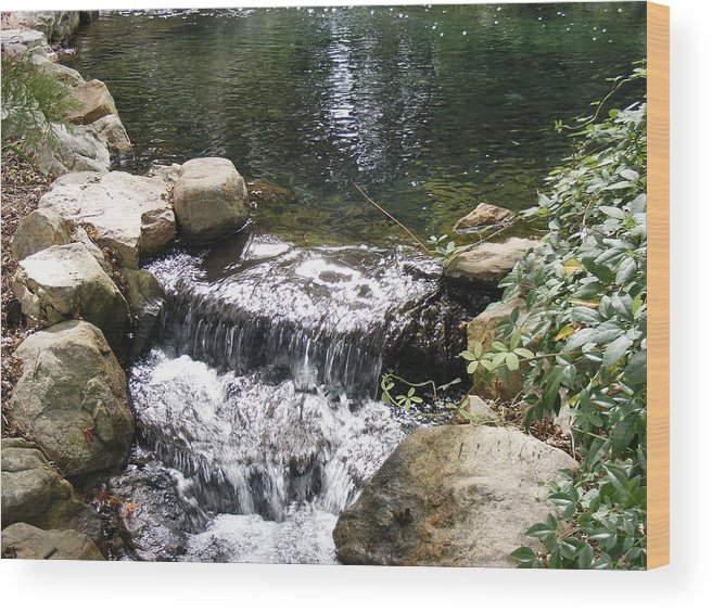 Water Wood Print featuring the photograph Falling by James and Vickie Rankin