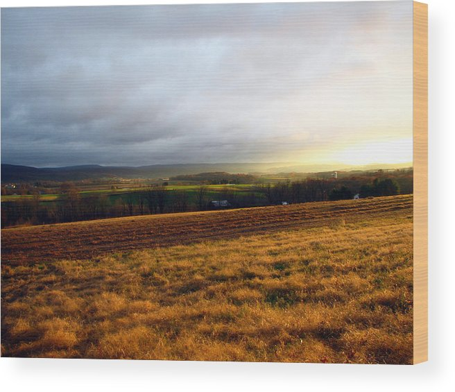 Farm Wood Print featuring the photograph Farm Field Sunset by George Jones