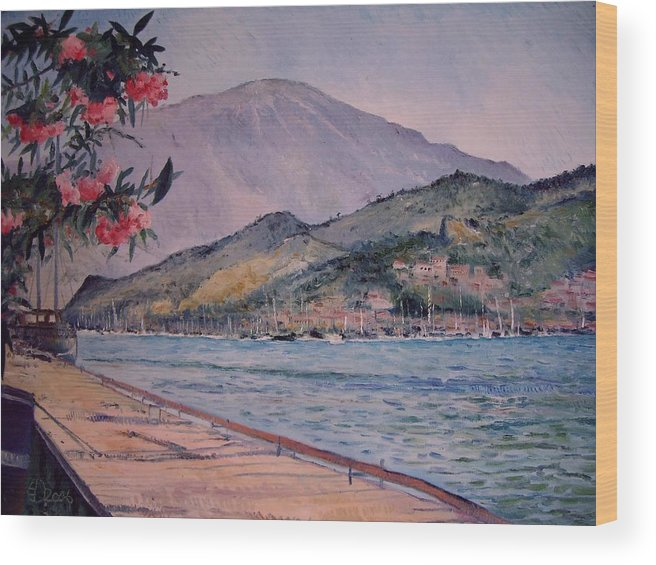 Turkey Wood Print featuring the painting Fethiye Turkey 2006 by Enver Larney