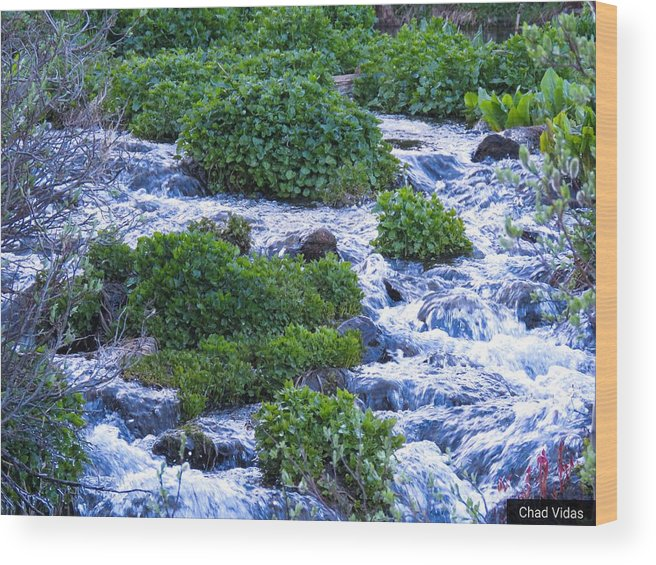 Colorado Wood Print featuring the photograph Flat Tops Stream by Chad Vidas