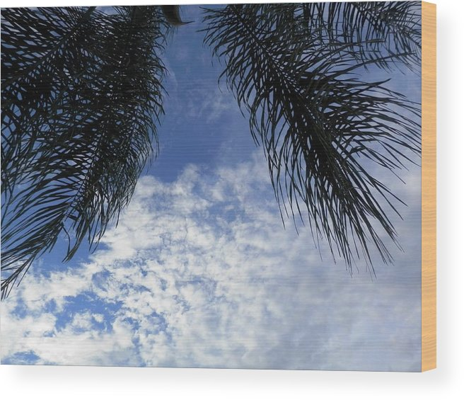 Beautiful Day In Port Richey #florida Wood Print featuring the photograph Florida Palm Fronds Blowing In The Breeze by Belinda Lee
