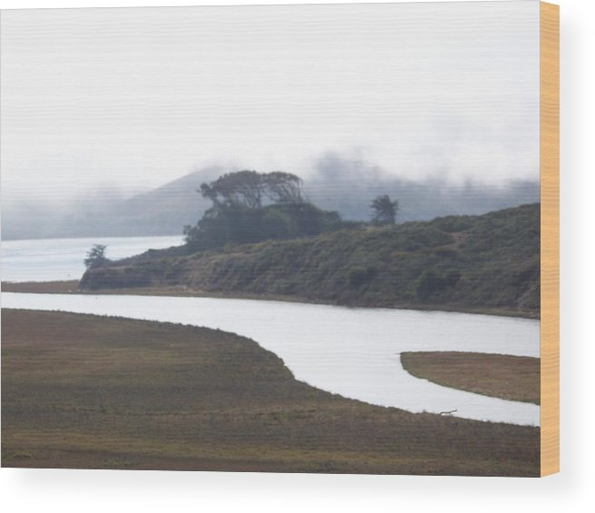Waterscape Wood Print featuring the photograph Flow by Maggie Cruser