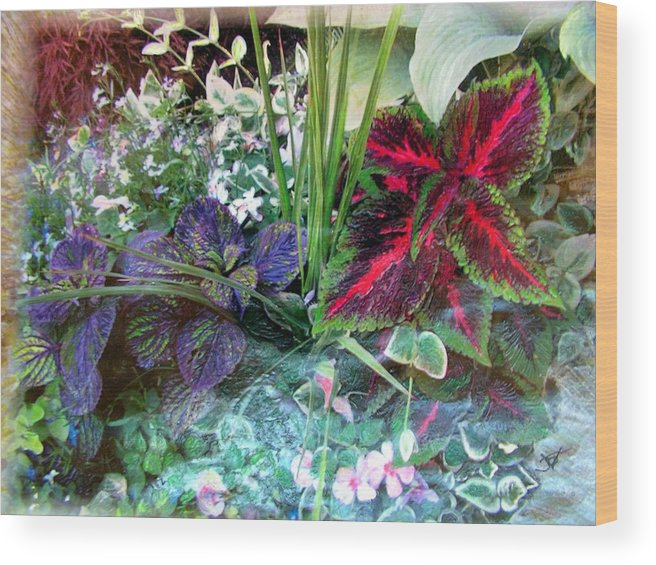 Flower Box Wood Print featuring the mixed media Flower Box by John Vandebrooke