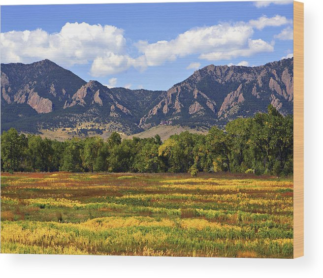 Fall Wood Print featuring the photograph Foothills Of Colorado by Marilyn Hunt