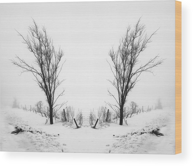 Black Wood Print featuring the photograph Fork In The Road by Christina Young