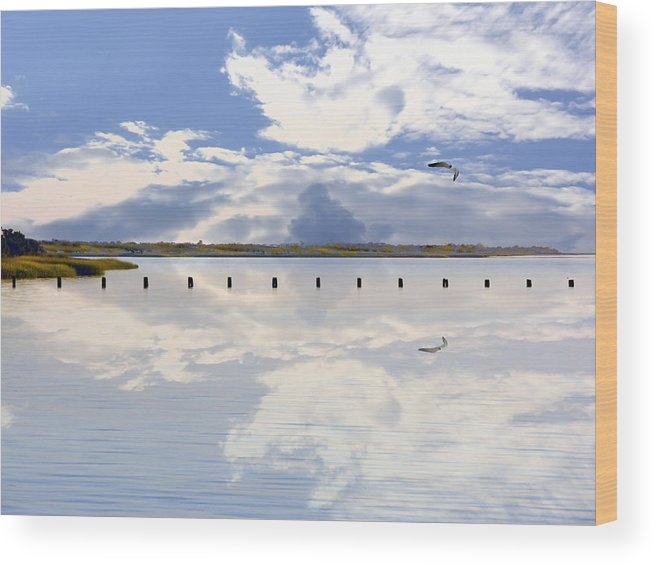 Cape Fear River Wood Print featuring the photograph Fort Fisher Reflection by Paul Boroznoff