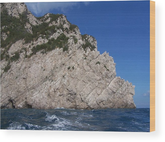 Capri Wood Print featuring the photograph Forty-five Degrees by Adam Schwartz