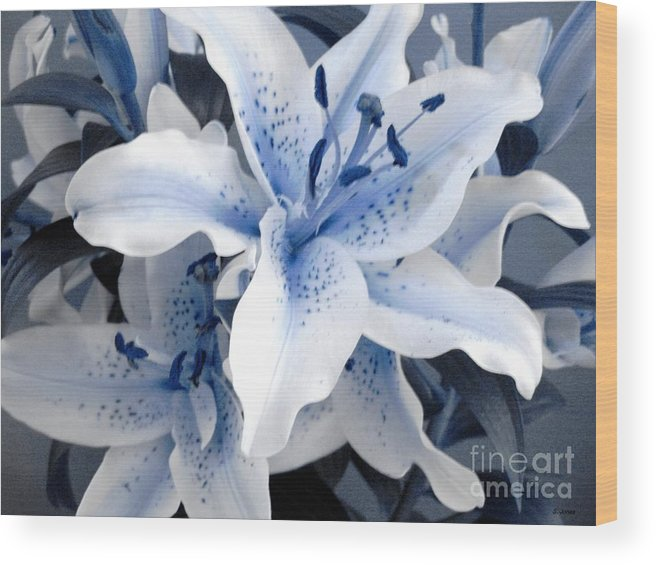 Blue Wood Print featuring the photograph Freeze by Shelley Jones