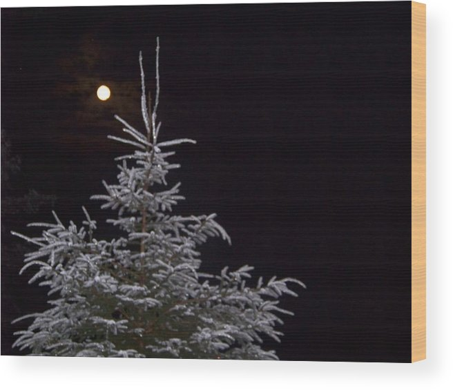 Moon Wood Print featuring the photograph Full Moon by Donna Davis