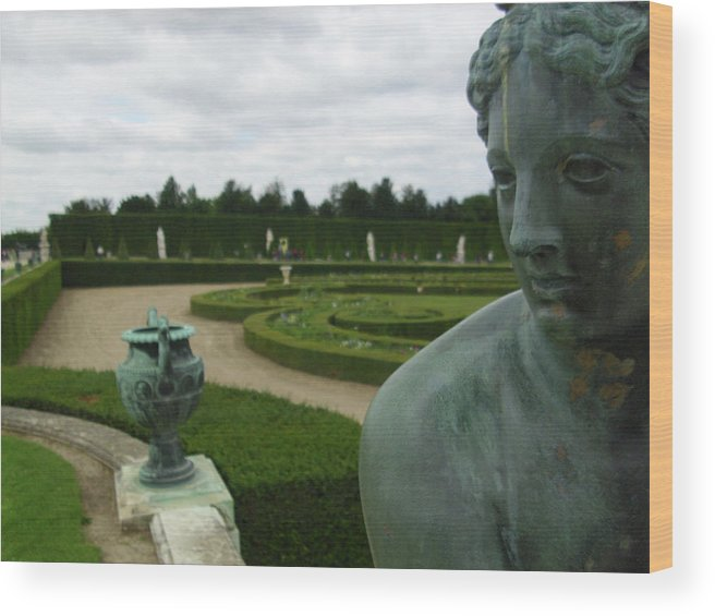 Statue Wood Print featuring the photograph Gardening A Defensive Wall by Dan Olson