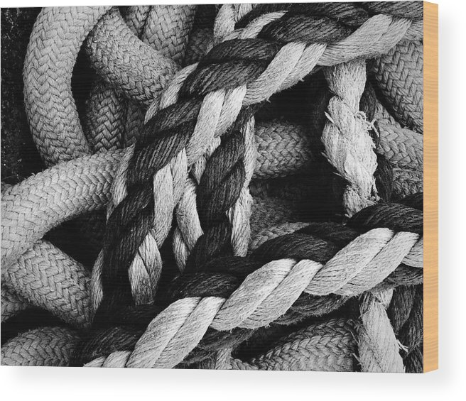 Give Them Some Rope Wood Print featuring the photograph Give Them Some Rope 2 by Skip Hunt
