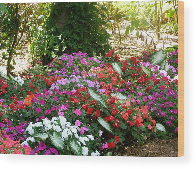 Flowers Wood Print featuring the photograph God Using His Paintbrush by Jeanette Oberholtzer