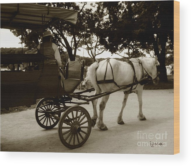 Driver Wood Print featuring the photograph Going Home by RC DeWinter