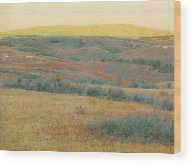 North Dakota Wood Print featuring the photograph Golden Dakota Horizon Dream by Cris Fulton