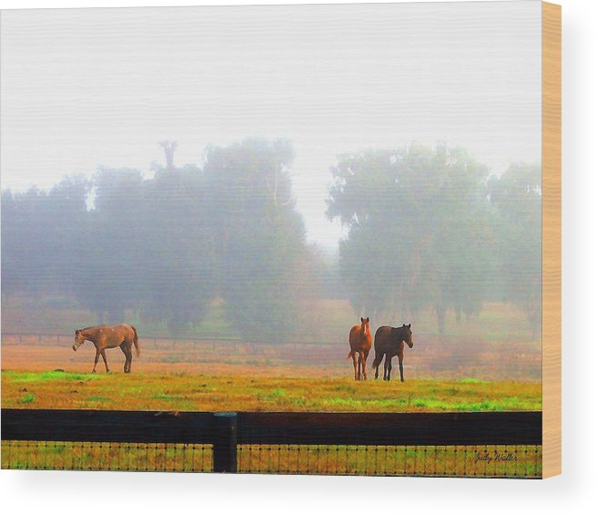 Horses Wood Print featuring the photograph Grazing by Judy Waller