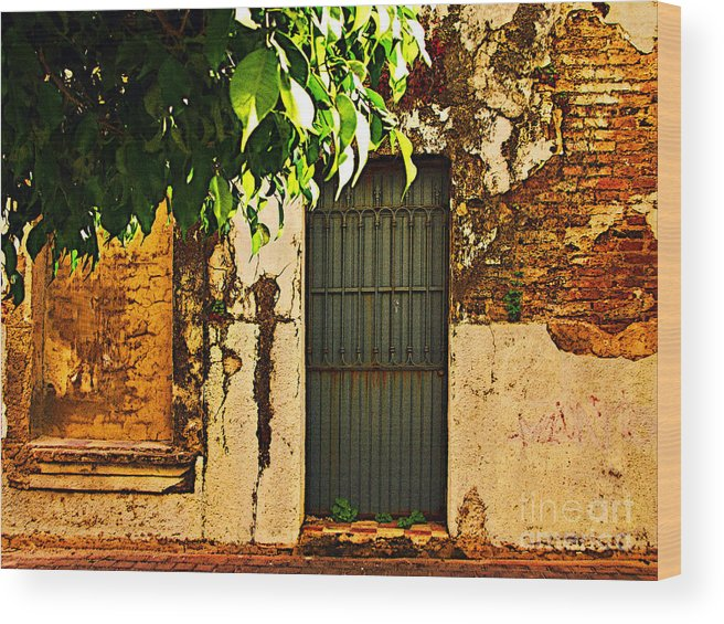 Michael Fitzpatrick Wood Print featuring the photograph Green Leaves And Wall By Michael Fitzpatrick by Mexicolors Art Photography