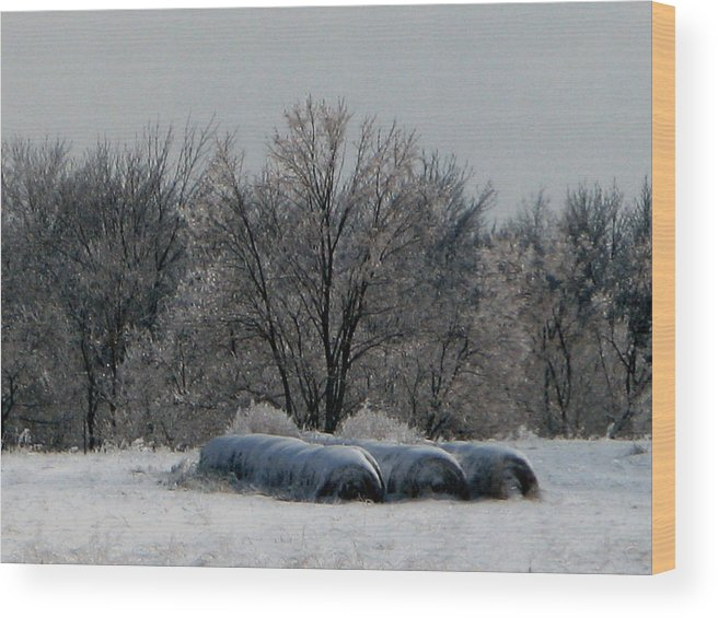 Nature Wood Print featuring the photograph Hay Bales by Martie DAndrea