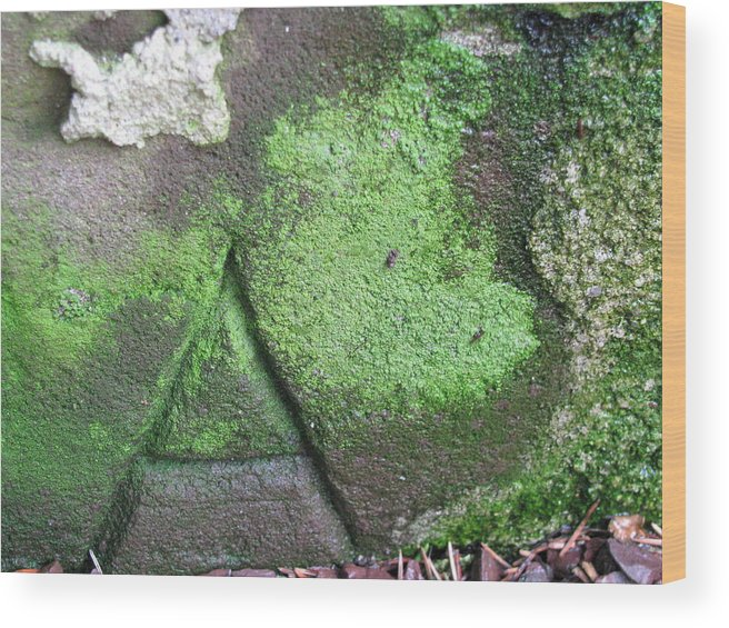 Stone Carving Wood Print featuring the photograph Hidden Meaning by Belinda Consten