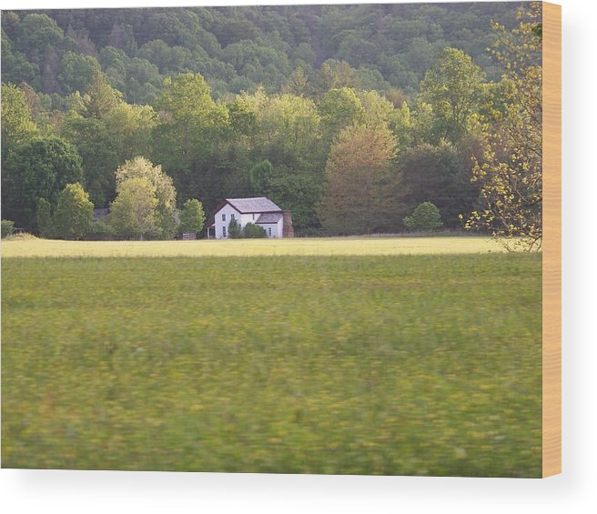 Nature Wood Print featuring the photograph Home by Jessica Burgett