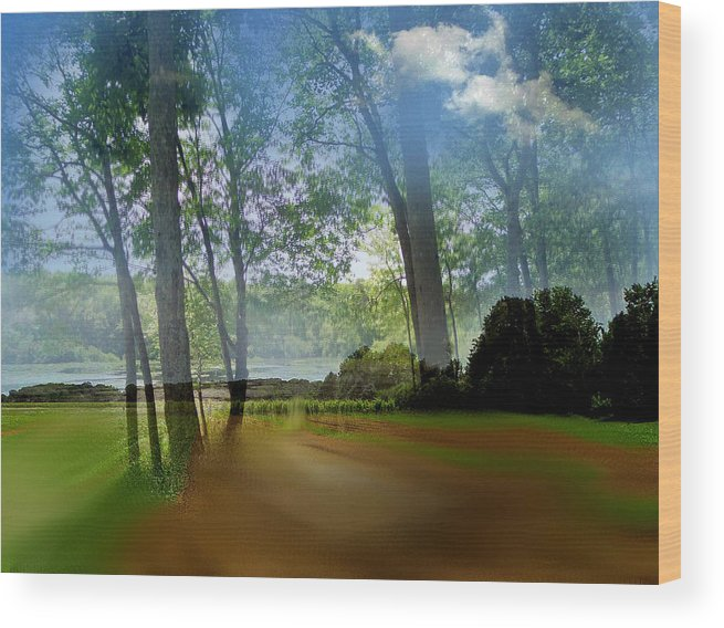 Wood Print featuring the photograph I Dreamt A by Pepsi Freund