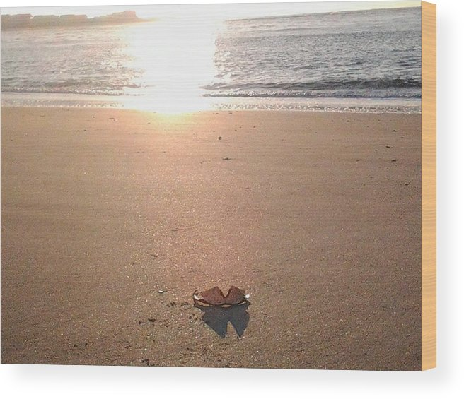 Artistry Wood Print featuring the photograph I Found Sun Shades By The Sea Shore by Becky Haines