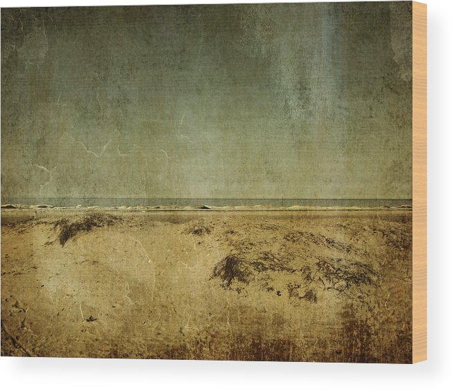 Beach Wood Print featuring the photograph I Wore Your Shirt by Dana DiPasquale
