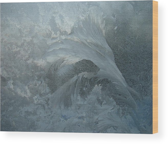 Nature Wood Print featuring the photograph Ice Crystals 1 by Eric Workman