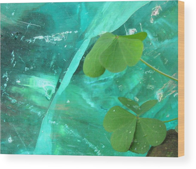 Crystal Wood Print featuring the photograph Ice Stone by Belinda Consten