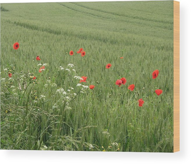 Lest-we Forget Wood Print featuring the photograph in Flanders Fields the poppies blow by Mary Ellen Mueller Legault