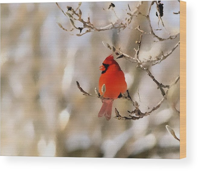 Cardinal Wood Print featuring the photograph In Red by Gaby Swanson