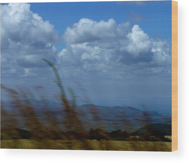 Wind Wood Print featuring the photograph In The Wind by Carole Guillen