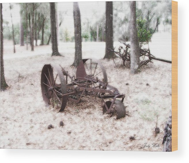 Old Wood Print featuring the photograph In Years Past by Judy Waller