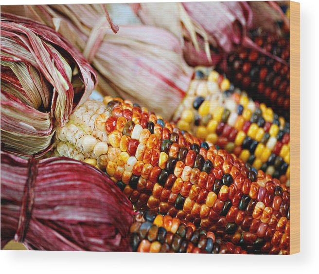 Corn Wood Print featuring the photograph Indian Corn by Marilyn Hunt