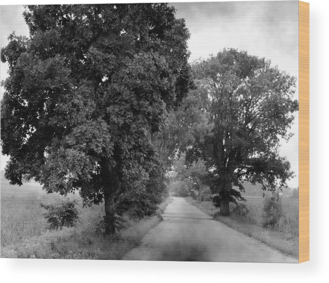 Landscape Wood Print featuring the photograph Indiana Road And Trees by Michael L Kimble