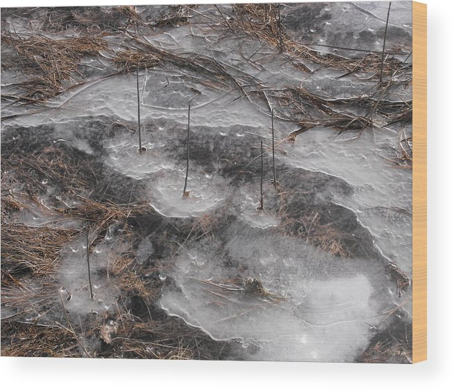 Ice Wood Print featuring the photograph Islands In The Field by john Kuti
