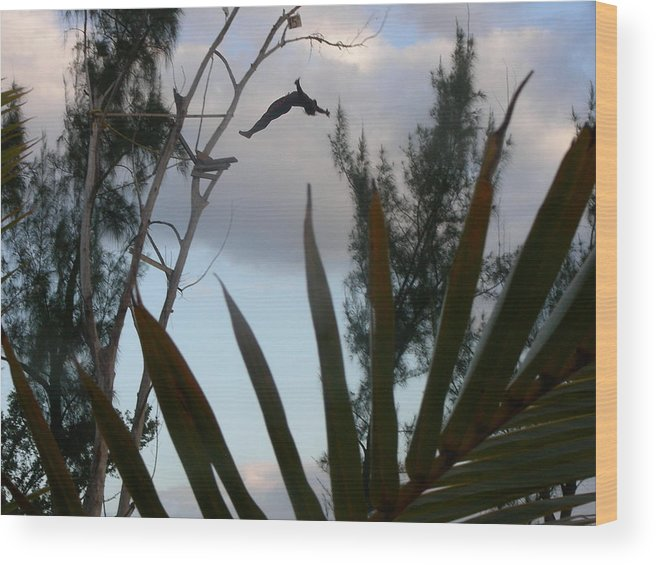 Diver Wood Print featuring the photograph Jamaica Dive by Peter McIntosh