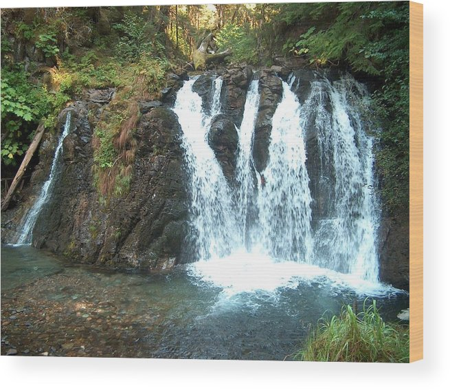 Waterfall Wood Print featuring the photograph Juneau Waterfall by Janet Hall