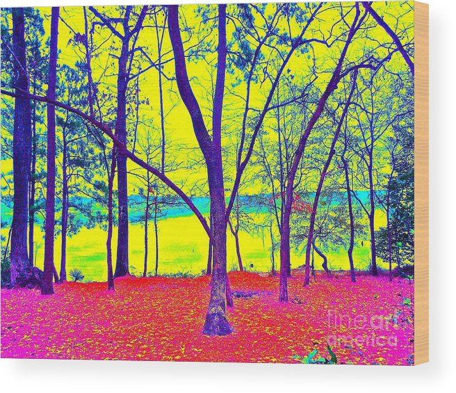 Trees Wood Print featuring the photograph Lake Eyed by Chuck Taylor