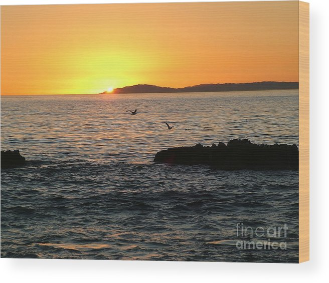 Sunset Wood Print featuring the photograph Last Rays by John Loyd Rushing