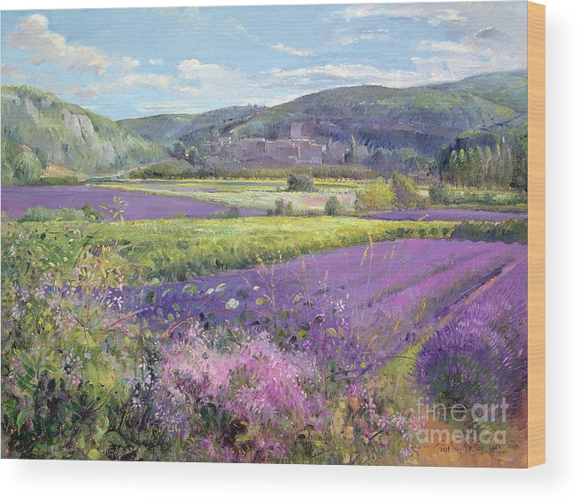 Field; South Of France; French Landscape; Hills; Hill; Landscape; Flower; Flowers; Field; Tree; Trees; Bush; Bushes; France; Provence Wood Print featuring the painting Lavender Fields In Old Provence by Timothy Easton