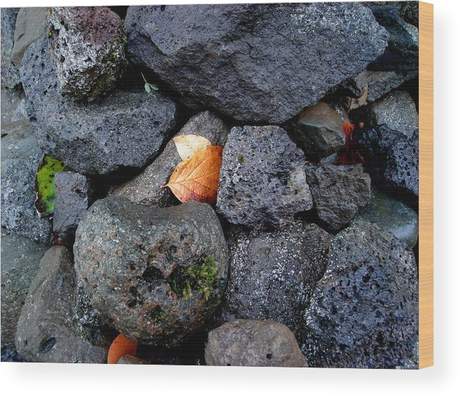 Nature Wood Print featuring the photograph Leaves And Stones by Marilynne Bull