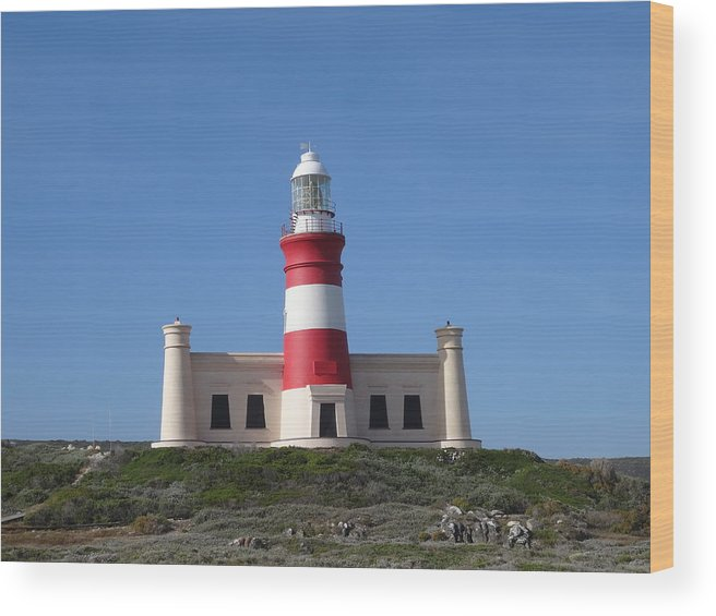 Lighthouse Of Agulhas Wood Print featuring the photograph Lighthouse Of Agulhas by Victor Carvalho