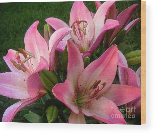 Nature Wood Print featuring the photograph Lilies In Company by Lucyna A M Green