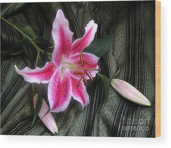 Nature Wood Print featuring the photograph Lily Stem On Green Brocade by Lucyna A M Green
