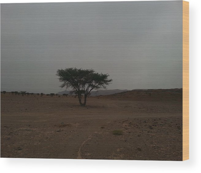 Tree Wood Print featuring the pyrography Lonely Tree In The Middle Of The Desert by Abderrazaq Oubouhmad
