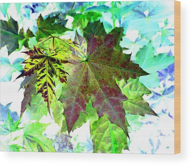 Maple Leaves Wood Print featuring the digital art Maple Mania 24 by Will Borden