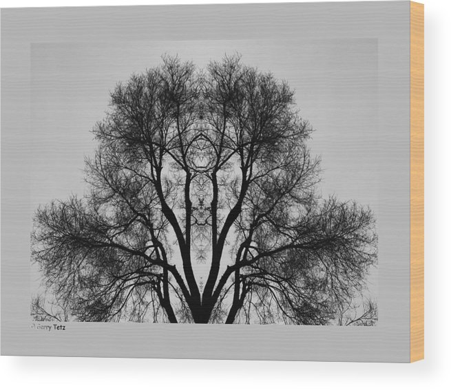 March Wood Print featuring the photograph March by Gerry Tetz