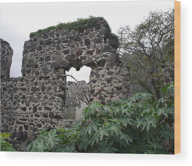 Stone Ruins Wood Print featuring the photograph Memories Of Another Time by Chandelle Hazen