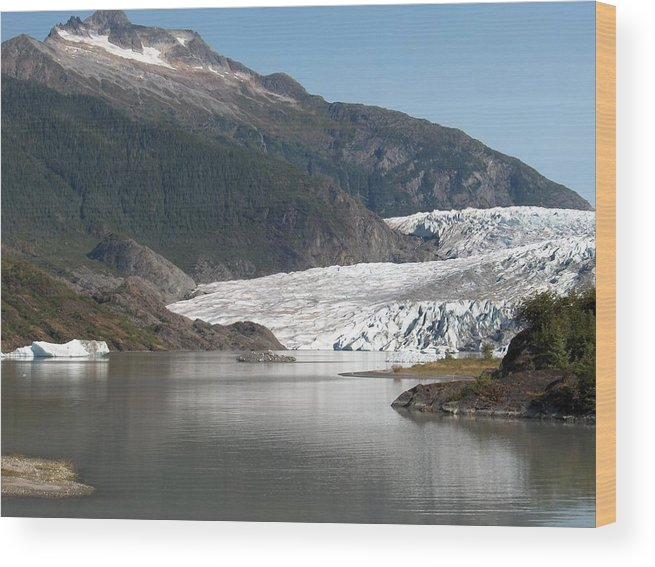 Mendenhall Wood Print featuring the photograph Mendenhall Glacier Alaska by Janet Hall