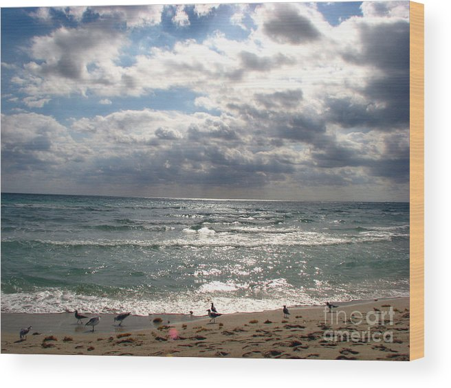 Miami Wood Print featuring the photograph Miami Beach by Amanda Barcon